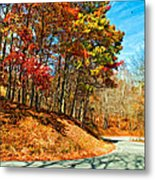 Country Curves And Vultures Paint Metal Print