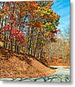 Country Curves And Vultures Metal Print