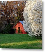 Country Gem Metal Print
