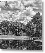 Country Lake 2 Metal Print