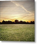 Country Landscape At Dawn Metal Print