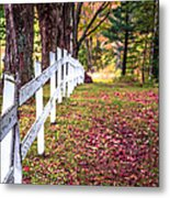 Country Lane Fall Foliage Vermont Metal Print