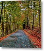 Country Lane In Autumn Metal Print