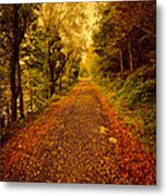 Country Lane V2 Metal Print