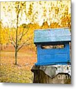 Country Letterbox Metal Print