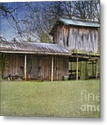 Country Life Metal Print by Betty LaRue
