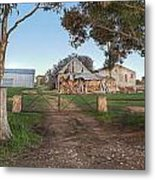 Country Life Metal Print by Shannon Rogers