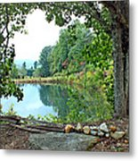 Country Pond Metal Print
