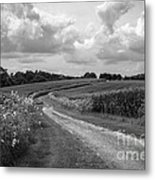 Country Road Metal Print by Chris Scroggins