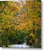 Country Road Fall Vermont Metal Print