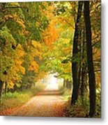 Country Road In Autumn Metal Print by Terri Gostola