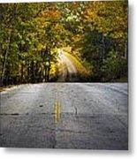 Country Road In Fall Metal Print