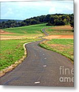 Country Road In France Metal Print by Olivier Le Queinec