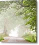 Country Road In The Fog Metal Print