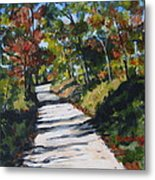 Country Road Two Metal Print