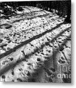 Country Road With Melting Snow In Early Spring Metal Print
