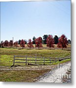 Country Roads Metal Print by Jinx Farmer
