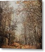 Country Smell Two Metal Print