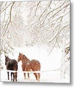 Country Snow Metal Print