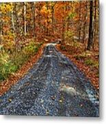 Country Super Highway Metal Print