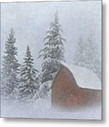Country Winter Metal Print by Angie Vogel