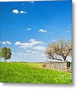 Countryside Landscape During Spring With Solitary Trees And Fence Metal Print