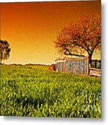 Countryside Orchard Landscape At Sunset. Spring Time Metal Print