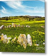 Countryside With Stones Metal Print