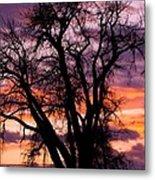 County Sunset Metal Print