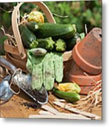 Courgette Basket With Garden Tools Metal Print
