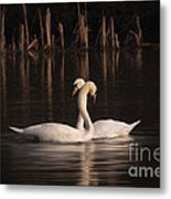 Courtship Painting Metal Print