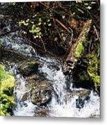 Covell Creek 4 Metal Print