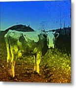 Cow On Lsd Metal Print