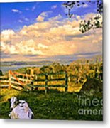 Cow Out To Pasture In Costa Rica Metal Print