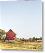 Cow Pasture Metal Print
