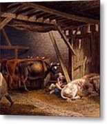 Cow Shed Metal Print by Robert Hills