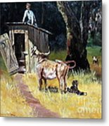 Cowboy On The Outhouse  Metal Print