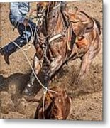 Cowboy Ropes Calf  Metal Print