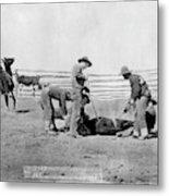 Cowboys, 1888 Metal Print