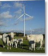 Cows And Windturbines Metal Print