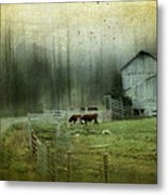 Cows By The Road Metal Print by Kathy Jennings