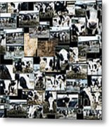 Cows Collage Metal Print