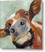 Cow's Eye View Metal Print