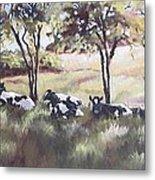 Cows Pasture Metal Print