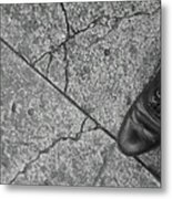 Crack In The Pavement Metal Print
