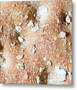 Cracker With Oats Metal Print