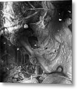Cradle Of Stress  Metal Print