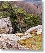 Craigs Of The Mountain Metal Print