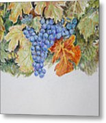 Cran-grapes Metal Print