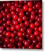 Cranberries - 1 Metal Print